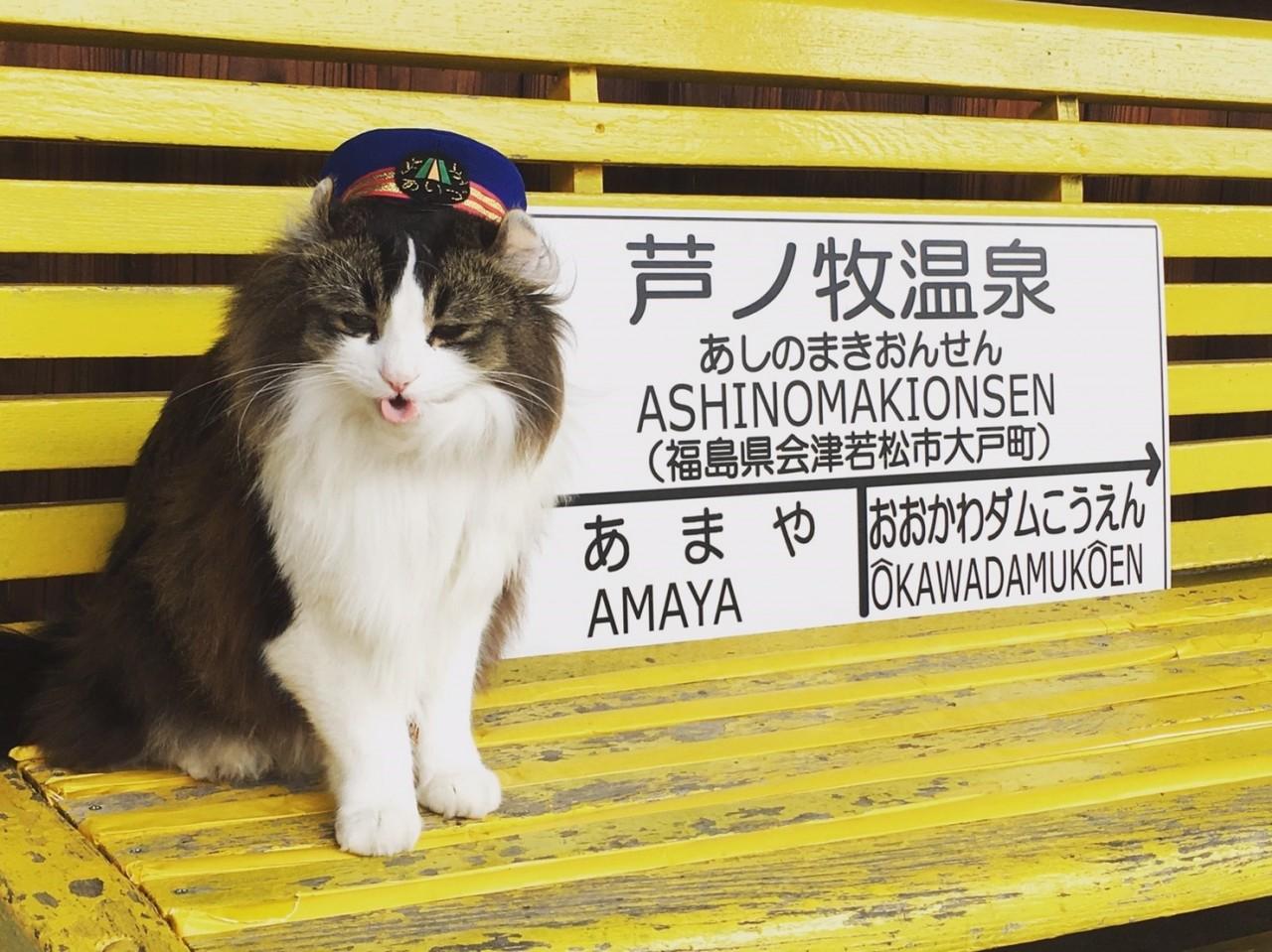 [โทจิกิ&ฟุคุชิม่า] รีวิวที่เที่ยว กิน นอน บล็อกเดียวจบ!