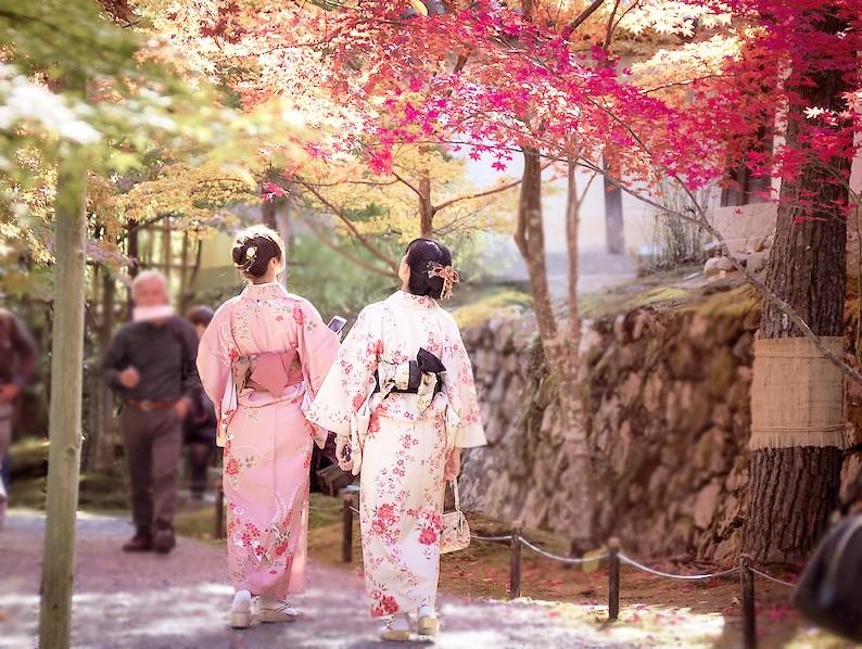 10 สถานที่ชมใบไม้เปลี่ยนสีสุดชิคในโตเกียว