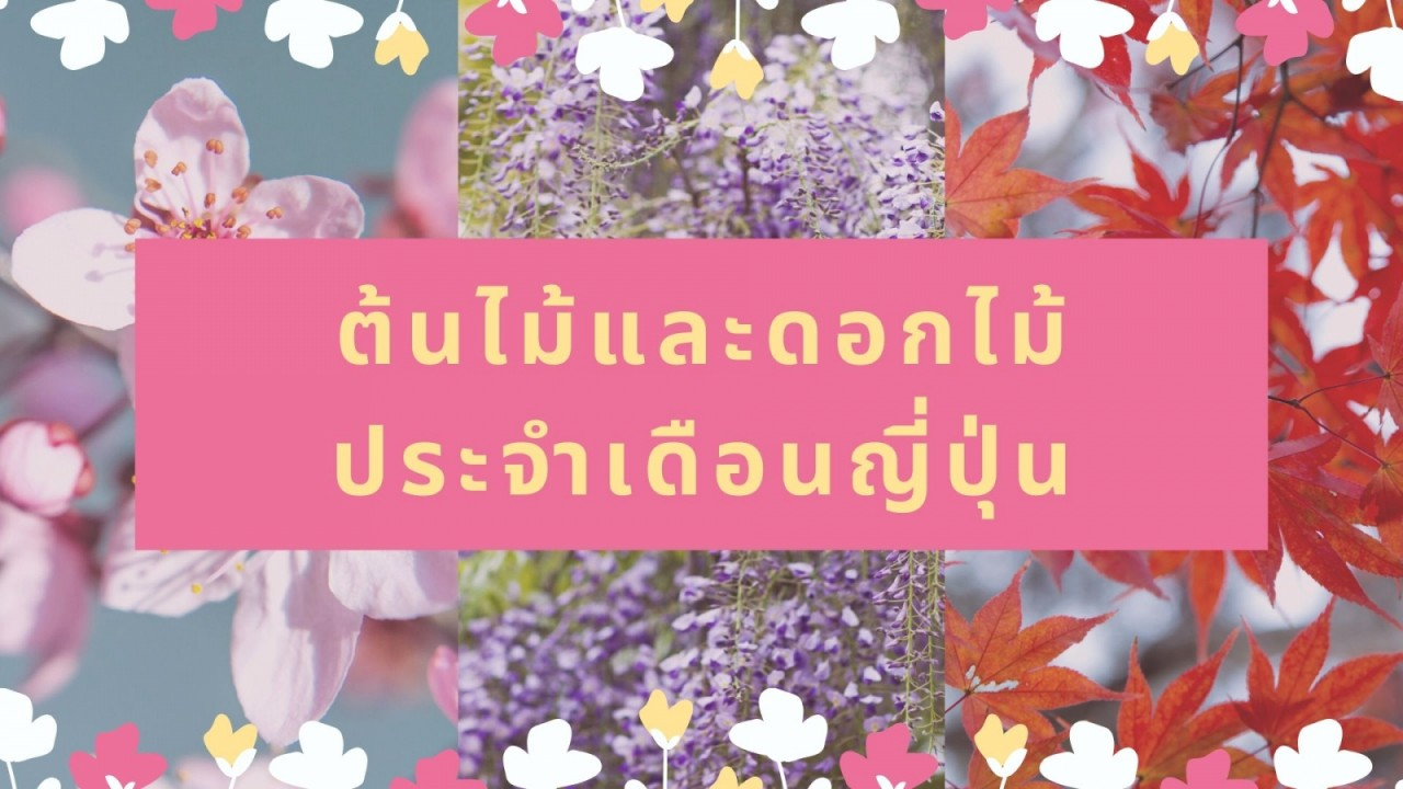 blog-cover-_25621028-111017_1