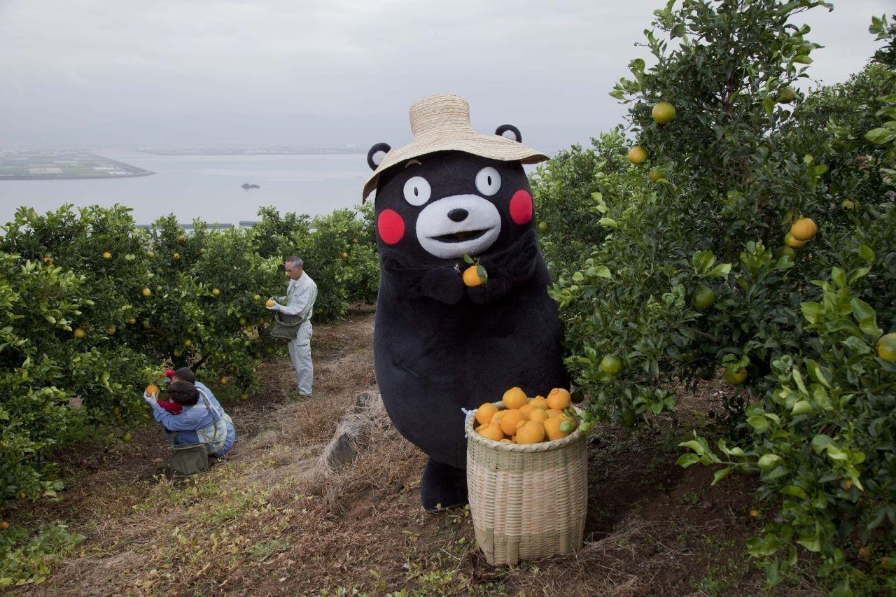 คุมะมง!!! หมีจอมซนแห่งเมืองคุมาโมะโตะ 1