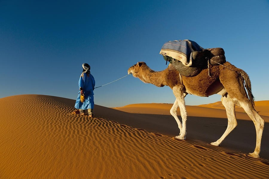 อยากเที่ยวทะเลทราย ไปแค่ญี่ปุ่นก็พอ!