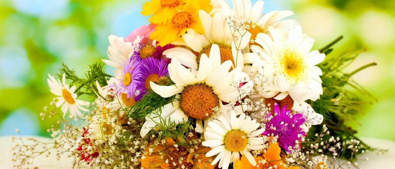 แนะนำข้อควรระวังต่างๆในการส่งดอกไม้ให้คนญี่ปุ่น